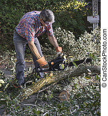 Man Cutting Tree Branches with Chainsaw - Man in gloves and...