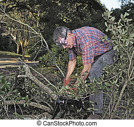 Sawing Tree Branches and Debris After the Storm - Man in...