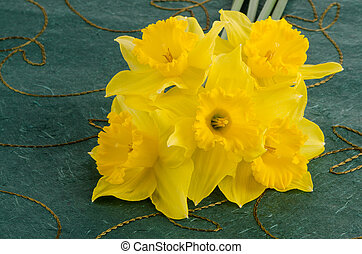 Jonquil flowers - Yellow jonquil flowers on green background...