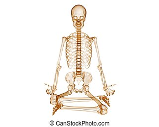 sitting skeleton - 3d rendered illustration of a sitting...