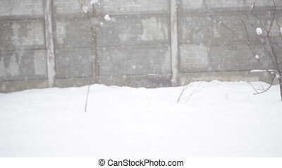 Old wall texture with falling snow