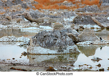 Mono lake California - Tufa formations in Mono lake...