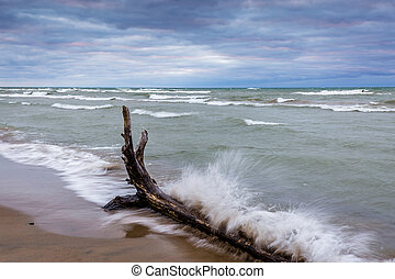Waves Crashing Against Driftwood on a Lake Huron beach -...