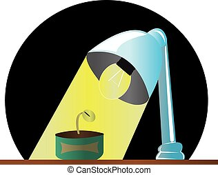 lamp and plant - shining light for fast growing plants