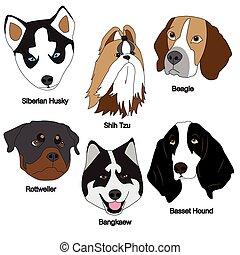 Dog Face Set : Siberian Husky, Shih Tzu, Beagle, Rottweiler,...