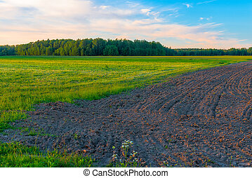 plowed field ready for sowing in early spring