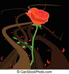 Rose Thorns and Briers - Thorns and briers growing and...