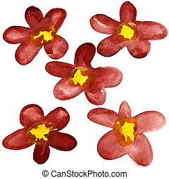 Dark red watercolor flowers - Five dark red watercolor...