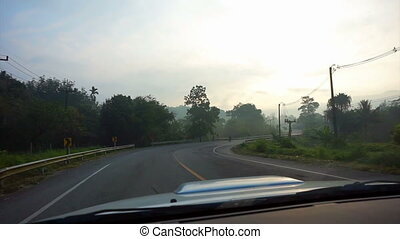 foggy road driving tropical jungle - tropical jungle with...