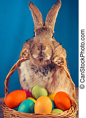 Brown Easter bunny - Easter rabbit with a basket of colored...