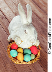 White Easter rabbit sits with basket of colored eggs on...