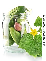Cropped shot of cucumbers in jar preparate for canning isolated on white