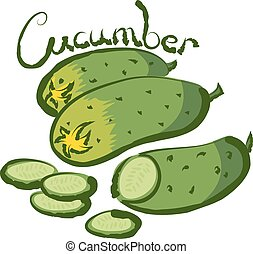Vector ucumber - vector cucumber with calligraphic...