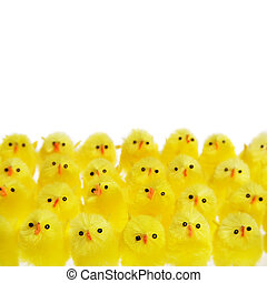 Easter Background - Rows of Easter chicks isolated over...