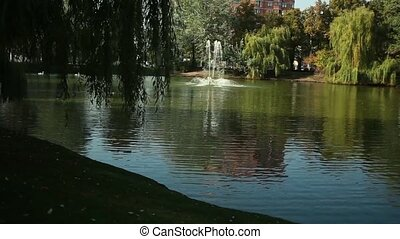 beautiful lake with a fountain in the park