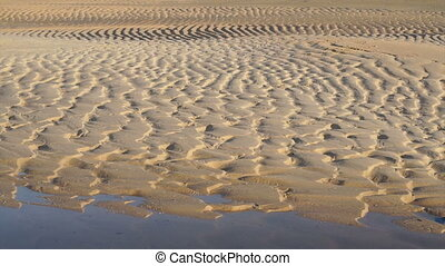 ridges and furrows on the beach. wet sand at the beach...