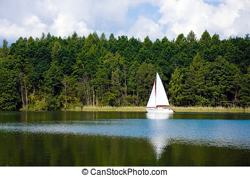 White sailboat sailing on a lake in the forest