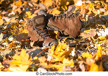 Hiking boots, well worn and muddy on the forest floor. -...
