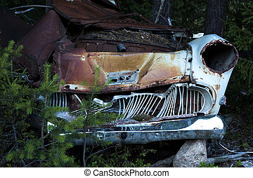 Rusty car wreck - Rusty wreck of vintage car in forest
