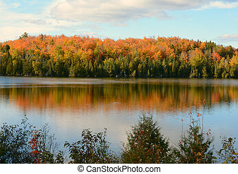 October On Nine Mile Lake - MN - Vivid autumn foliage and...