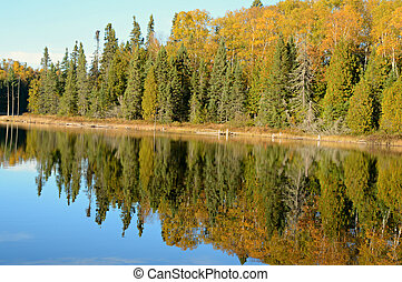 Reflections On Elixir Lake - MN - Bright vista of fall...