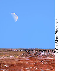 Petrified Forest and Moon - Moon and scenic landscape of...