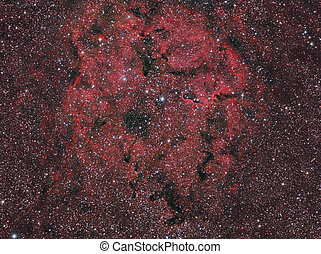 IC1396 Elephant's Trunk Nebula imaged with a telescope and a...