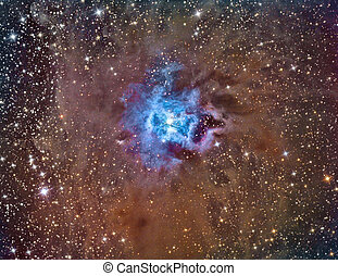 NGC 7023 Iris Nebula imaged with a telescope and a...