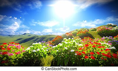 Beautiful landscape with flowers - Beautiful landscape with...