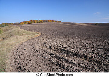Autumn landscape - autumn field landscape and blue sky