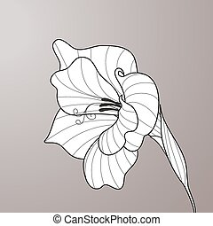 Flower gladiolus. Contour graphic art - Black and white...