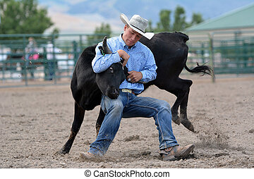 Steer Wrestling - Cowboy wrestling a steer during a rodeo.