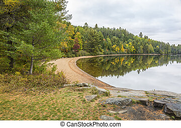 Sandy Beach on a Forested Lake in Autumn - Ontario, Canada -...