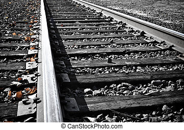 Railroad Tracks in the fall with orange leaves