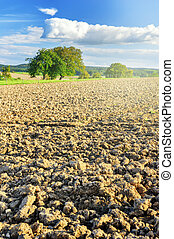 Agricultural landscape with ploughed field Copy space