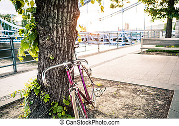 Road fixed bicycle on city street under tree