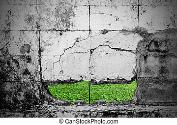 Cement wall with cracks  and Lawn.