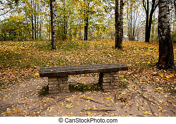 bench in autumn Park covered with yellow leaves