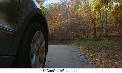 Sunday drive in autumn spinning front wheel PoV, low angle...