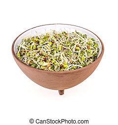Sprouts - Mix of green young sprouts in bowl isolated on...