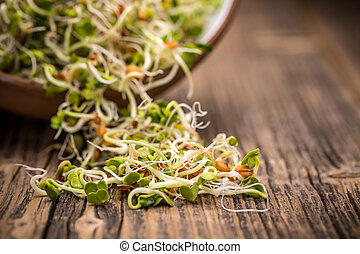 Mix of sprouted seeds on a wooden background