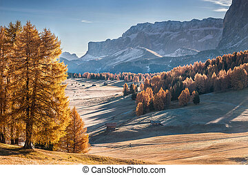Mountan in Alpe de Siusi - Autumn landscape with mountan in...