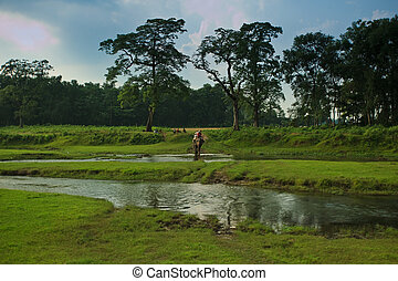 Elephant and Rider Crossing River in Nepal
