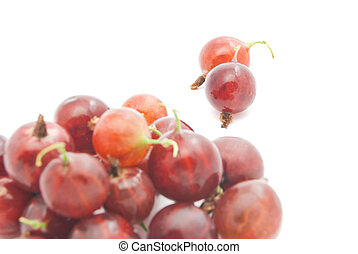 heap of gooseberries - heap of red gooseberries on white...
