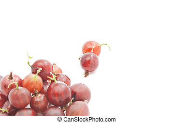 some red gooseberries - some tasty red gooseberries on white...