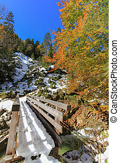 Wooden bridge and forest in snow - View of the wooden bridge...