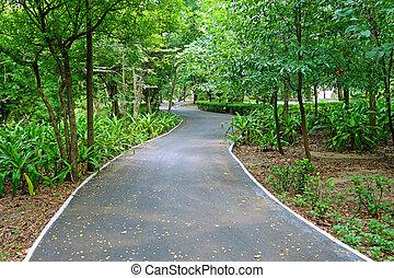自転車, 車線, 公園