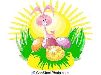 Sun rabbit