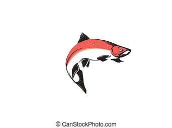 Salmon Vector Illustration