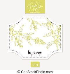 Product sticker with hand drawn hyssop leaves. Spicy herbs...